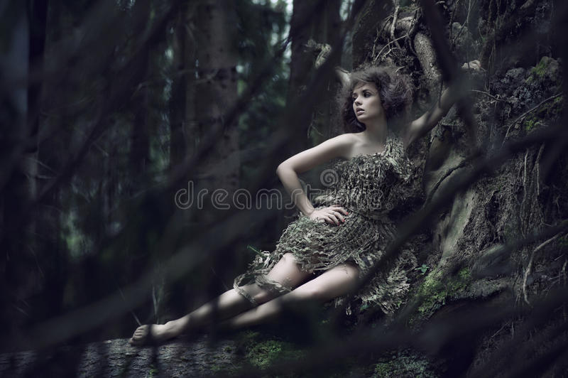 Dame d'Eco se trouvant sur le joncteur réseau photo stock