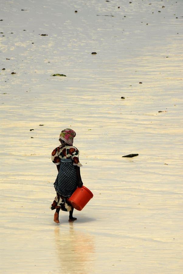 Dame de Sovahéli, île de Zanzibar photos libres de droits