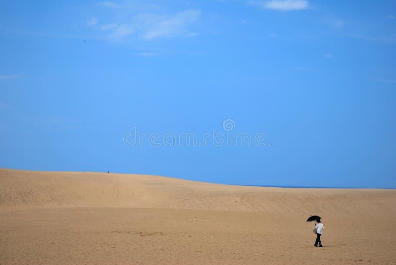 Dame in der Wüste stockfotografie
