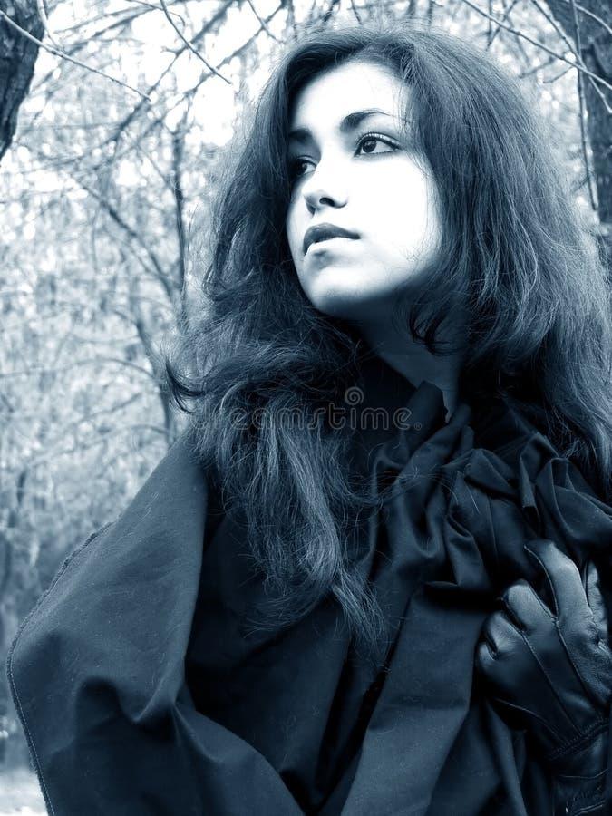 Dame des Holzes #2 lizenzfreie stockfotos
