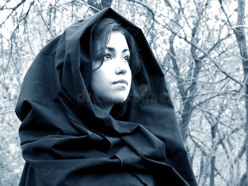 Dame des Holzes #3 lizenzfreies stockfoto