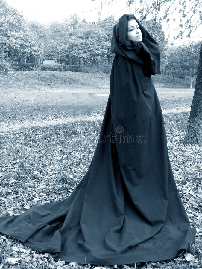Dame des Holzes #5 stockbilder