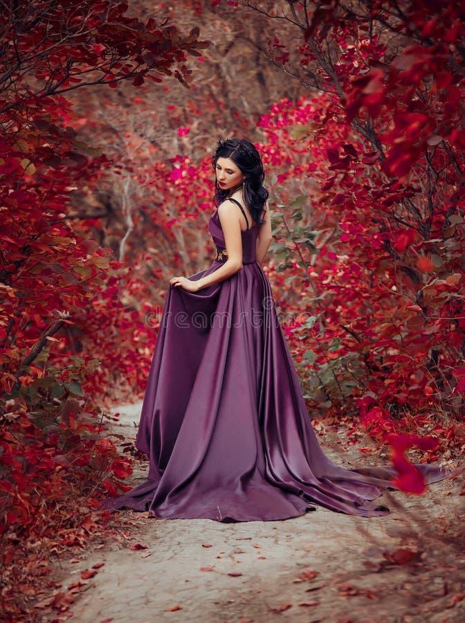 Dame in een luxe weelderige purpere kleding stock foto's