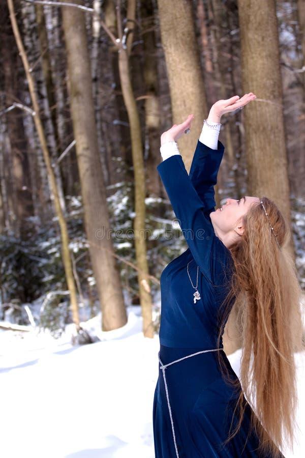 Dame en sneeuw stock foto's