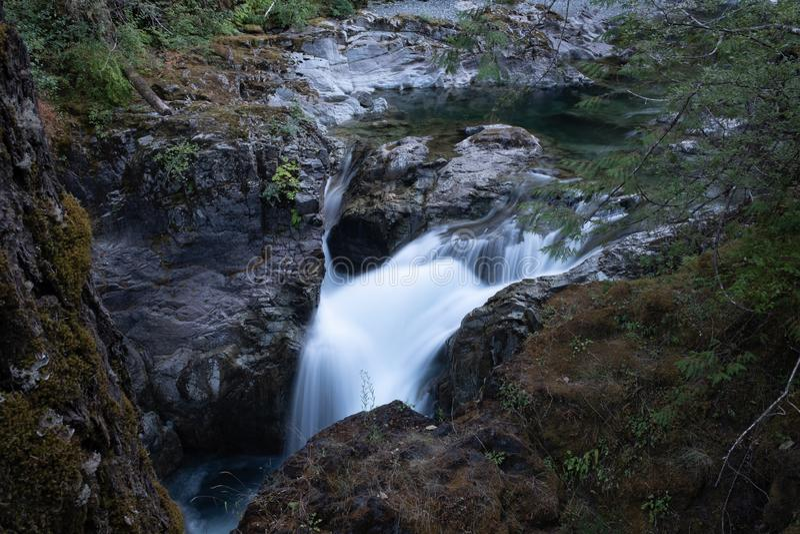 Dame Falls, Waterval, het Provinciale Park van Strathcona dichtbij Campbell River, Brits Colombia, Canada, lange glad te maken bl stock afbeelding