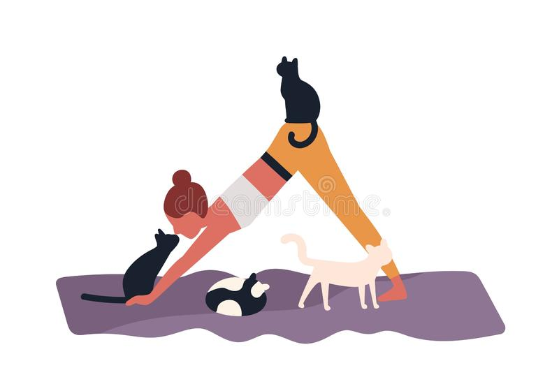 Dame folle de chat exécutant l'exercice gymnastique ou pratiquant le yoga avec ses animaux familiers Jeune femme et ses animaux d illustration libre de droits