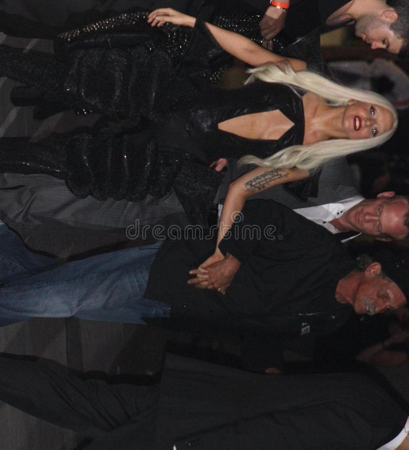 Dame Gaga stock afbeelding