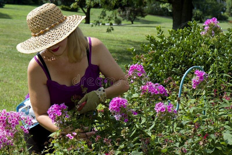 Dame Gardening stock fotografie
