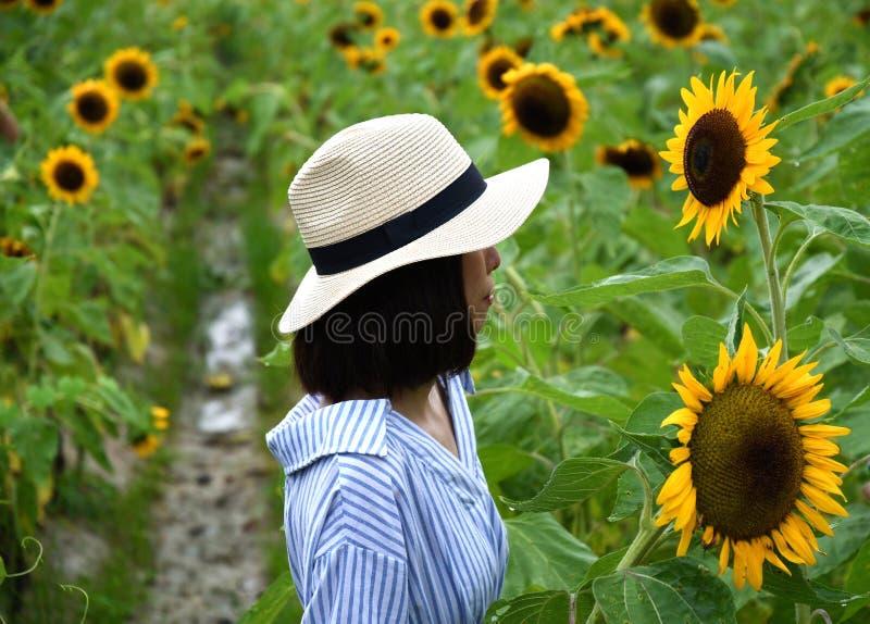 Dame genießen, die Schönheit von Sonnenblumen aufzupassen lizenzfreie stockfotos