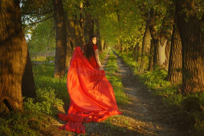 Dame im Rot auf dem Weg lizenzfreie stockfotos