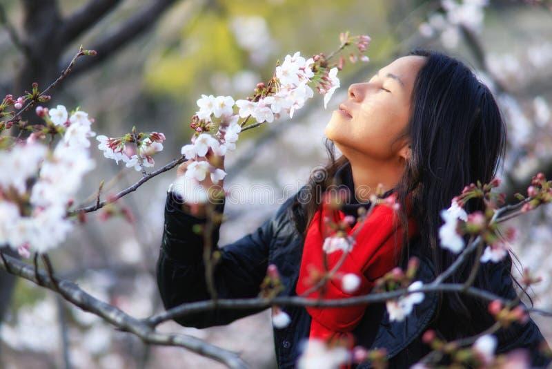 Dame am japanischen Frühling lizenzfreies stockfoto