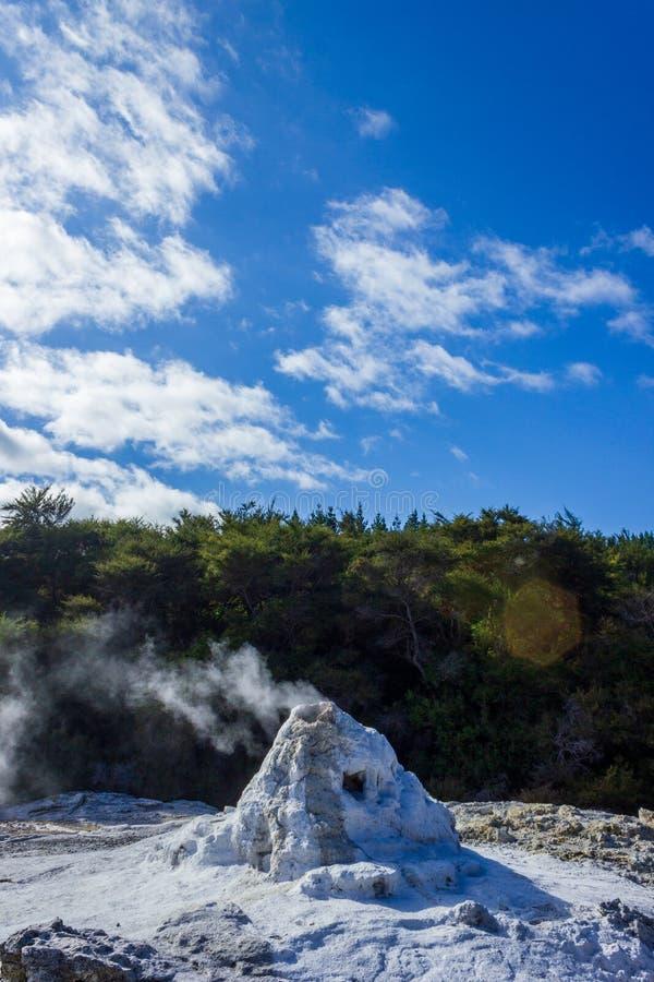 Dame Knox Geyser, thermisches Märchenland Wai-O-Tapu, Rotorua, Neuseeland lizenzfreies stockfoto