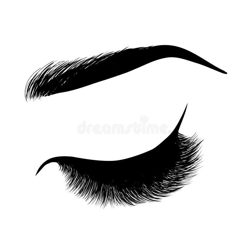 Dame modieus oog en brows met volledige zwepen stock illustratie