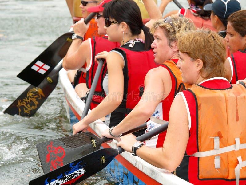 Dame Rowers stock fotografie