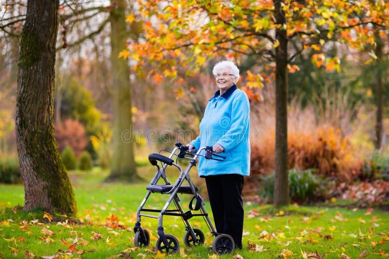 Dame supérieure avec un marcheur en parc d'automne photographie stock libre de droits