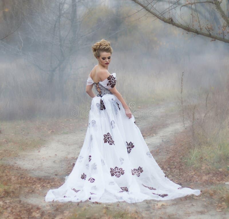 Dame in uitstekende kleding in het bos in de mist stock afbeeldingen