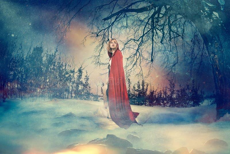 Dame van Fairytale royalty-vrije stock foto's