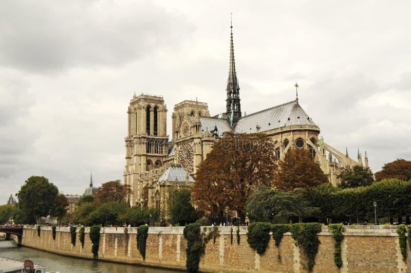 damenotre paris royaltyfria bilder