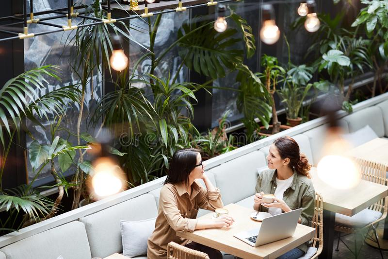 Dameondernemers die strategie in koffie bespreken royalty-vrije stock afbeeldingen