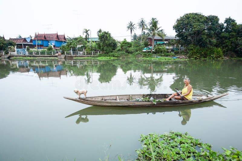 Dames âgées heureuses et amour de chiot sur un petit sourire en bois de bateau images stock