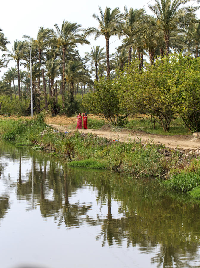 Damiette, Egypte, - 22 mai 2015 : Village non identifié W égyptien photo libre de droits