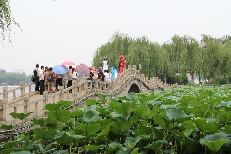 Daming Lake, cidade de Jinan, província de Shandong, parque de China fotos de stock