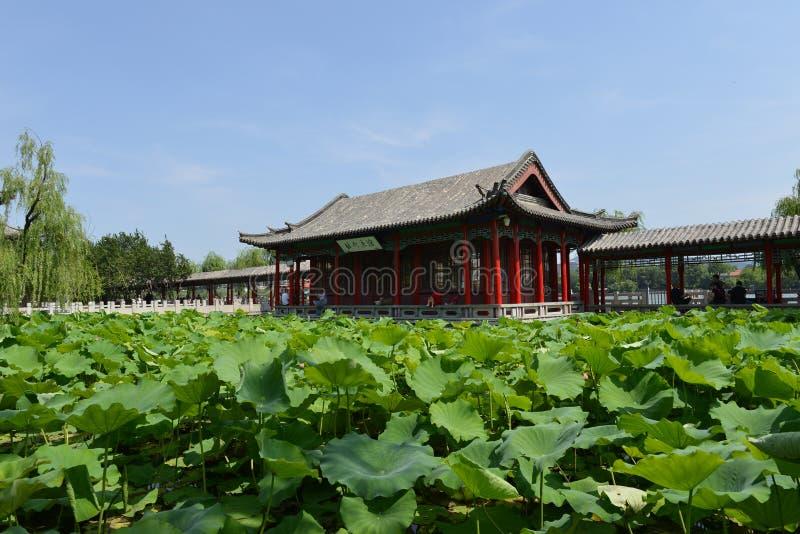 Daming Lake en Jinan imagen de archivo