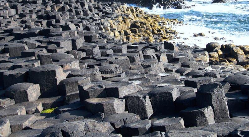 Damm-Basaltsäulenahaufnahme des Riesen stockfoto