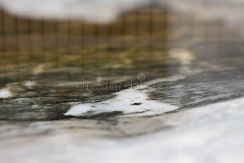 Damm bredvid en relikskrin royaltyfri foto