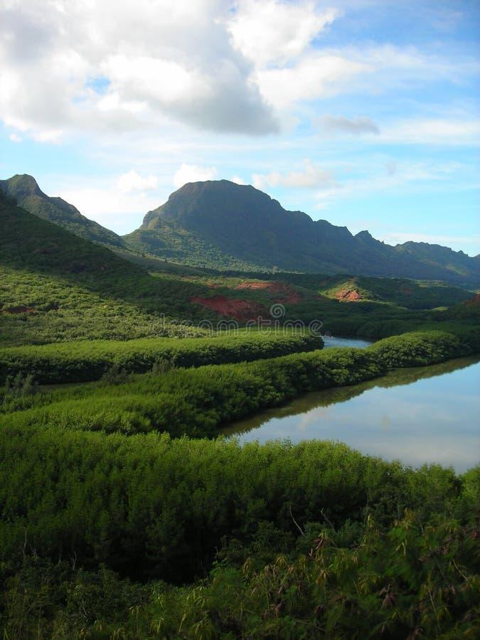 damm för menehune för fiskH kauai royaltyfri fotografi