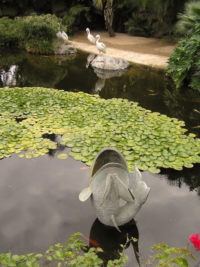 Damm med guldfisken fotografering för bildbyråer