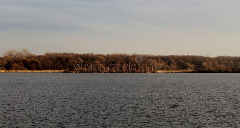 Damm med träd, läge Nadrz Zavada - Vetrov, Petrovice u Karvine, CZ royaltyfria foton