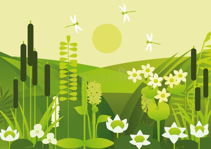 Damm med vattenväxter och blommor royaltyfri illustrationer