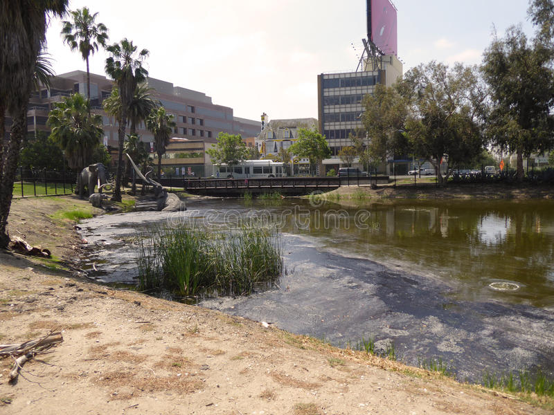 Damm- och djurkopior framme av laen Brea Tar Pits & museet, Los Angeles, Kalifornien, circa kan 2017 royaltyfri foto