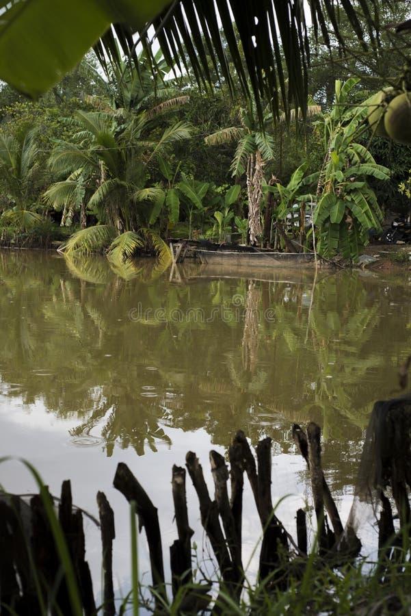Damm som omges av tropiska träd i Vietnam, med trästaketet i forgrounden och en liten träpir i baksidan royaltyfri foto