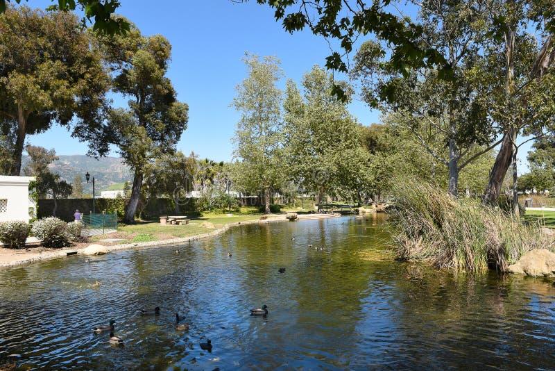 Dammet på jakt gömma i handflatan parkerar Santa Barbara arkivbild