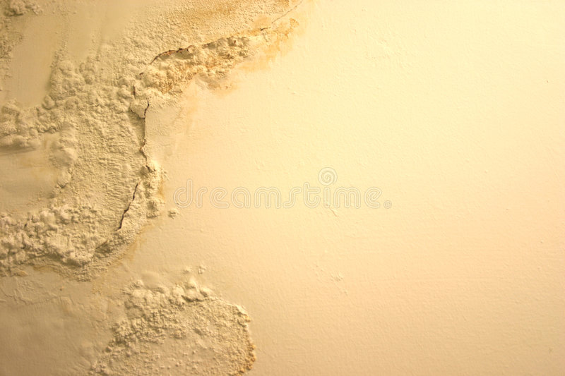 Damp Peeling Paint stock photography