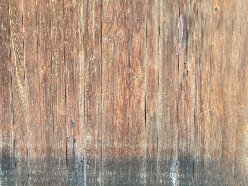 Damp Wood-struktur Bakgrund till trästruktur för design och byggnad arkivbilder