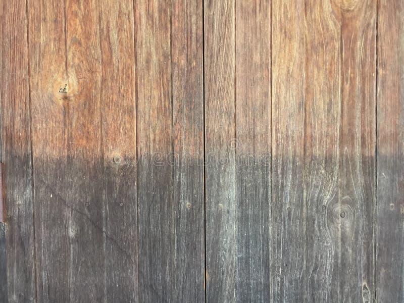 Damp Wood-struktur Bakgrund till trästruktur för design och byggnad royaltyfria foton