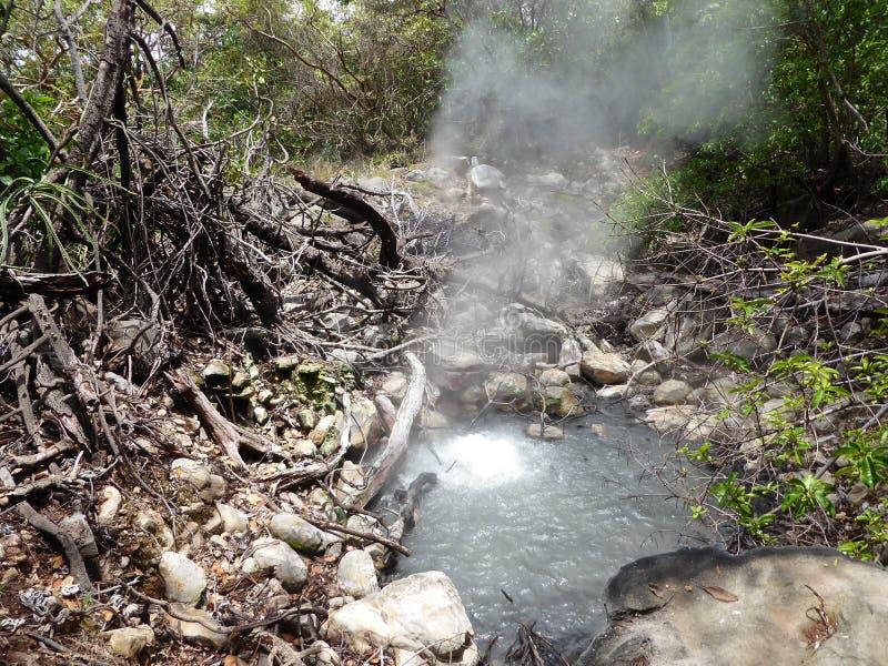 Dampf, der von einem vulkanischen Pool steigt lizenzfreies stockbild