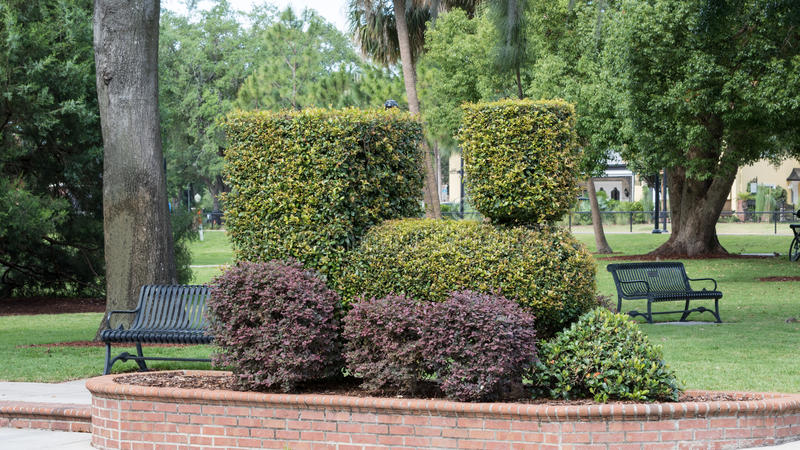 Dampf-Maschine geformter Bush, Winter-Park, Orlando, Florida stockbilder