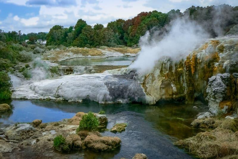 Dampf und kochende heiße Quellen an geothermischem Bereich Te Puias, Rotorua, Neuseeland lizenzfreie stockbilder