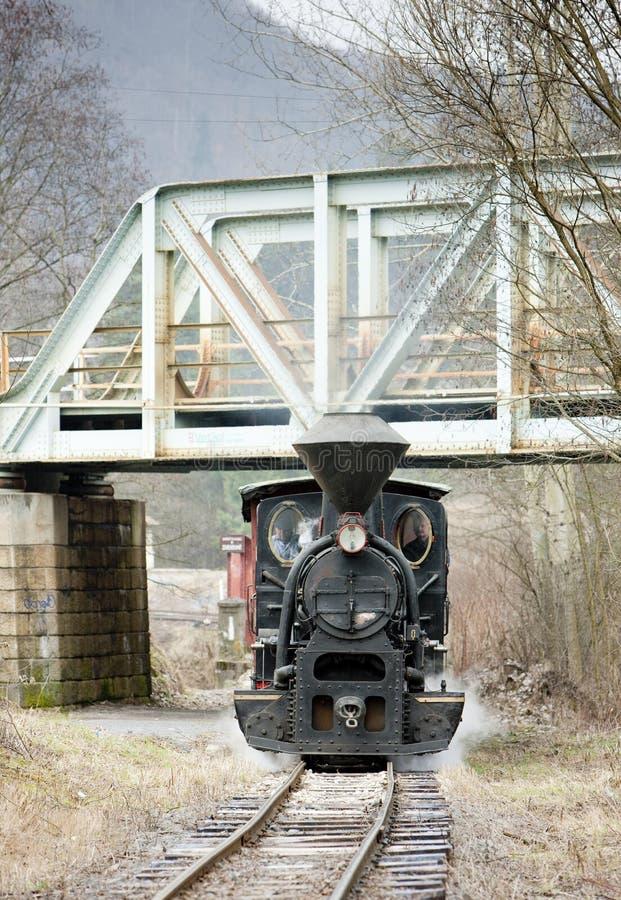 Dampfzug, Ciernohronska-Eisenbahn, Slowakei lizenzfreie stockfotografie