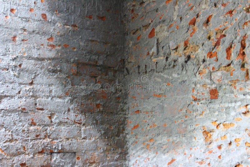 Dampness na ścianach fotografia royalty free