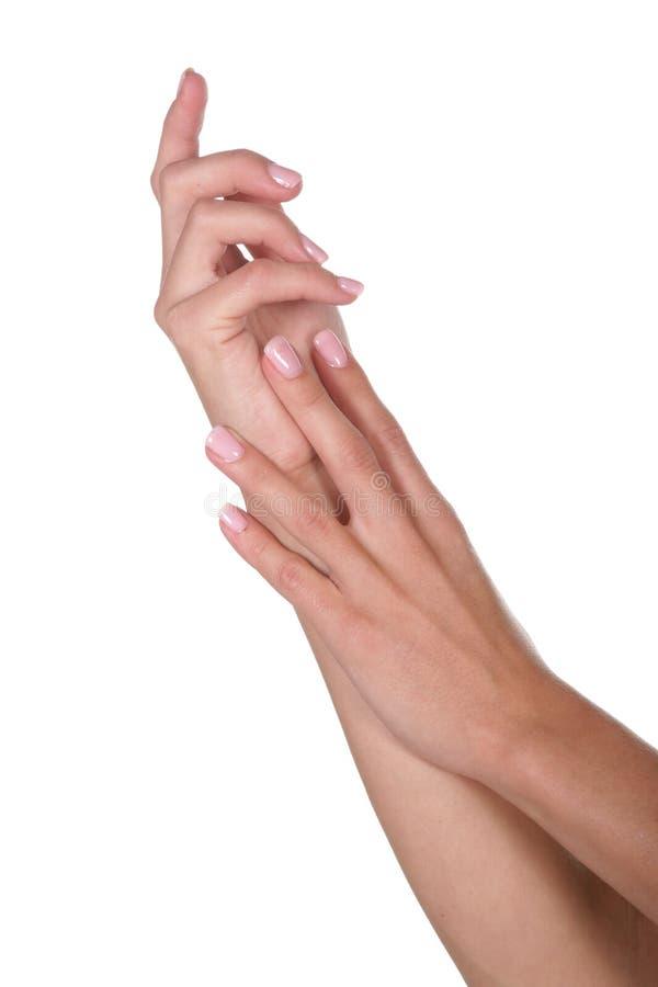 Dams Manicured händer arkivbild