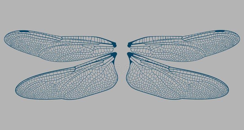 damselflyen details vingen vektor illustrationer