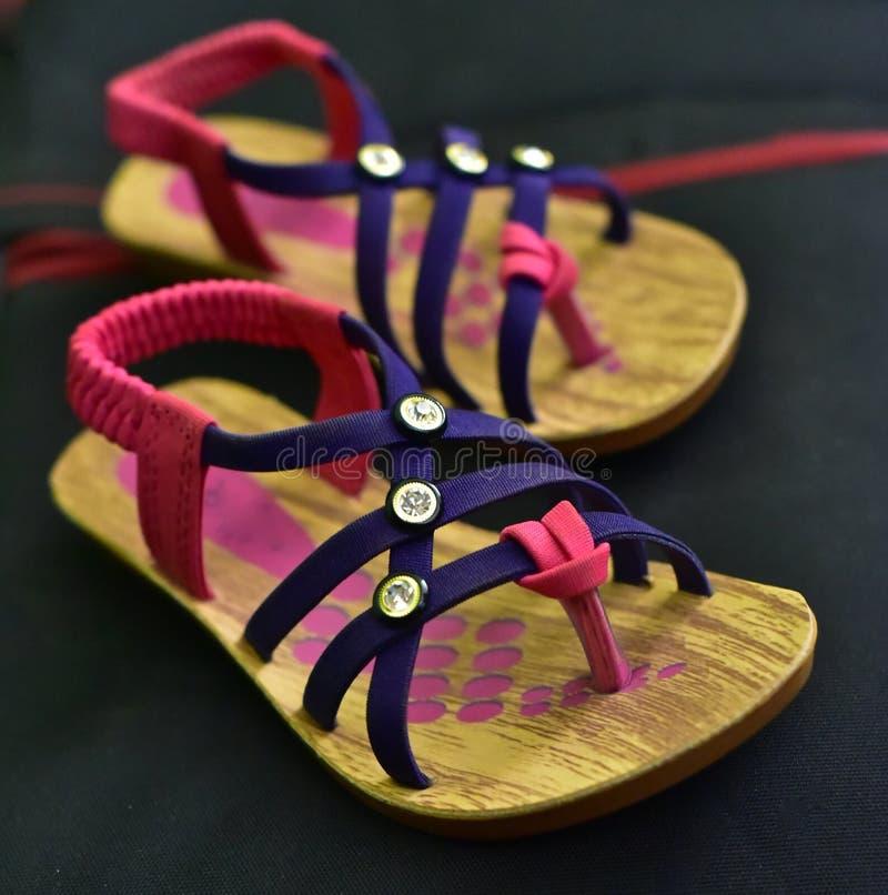 Damy obuwia mody przedmiota fotografia obraz stock