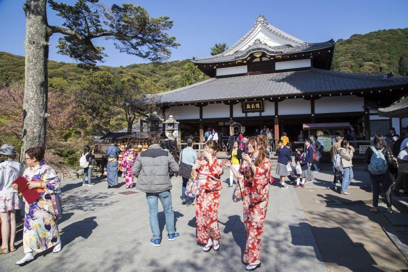 Damy w kimonie przy Kiyomizu-Dera świątynią, Kyoto, Japonia fotografia stock