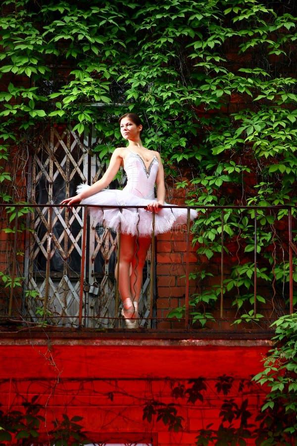 Dança bonita do bailado da dança da bailarina fotografia de stock royalty free