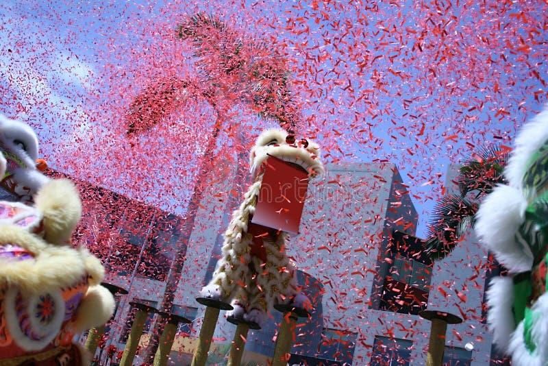 Dança chinesa do leão fotografia de stock